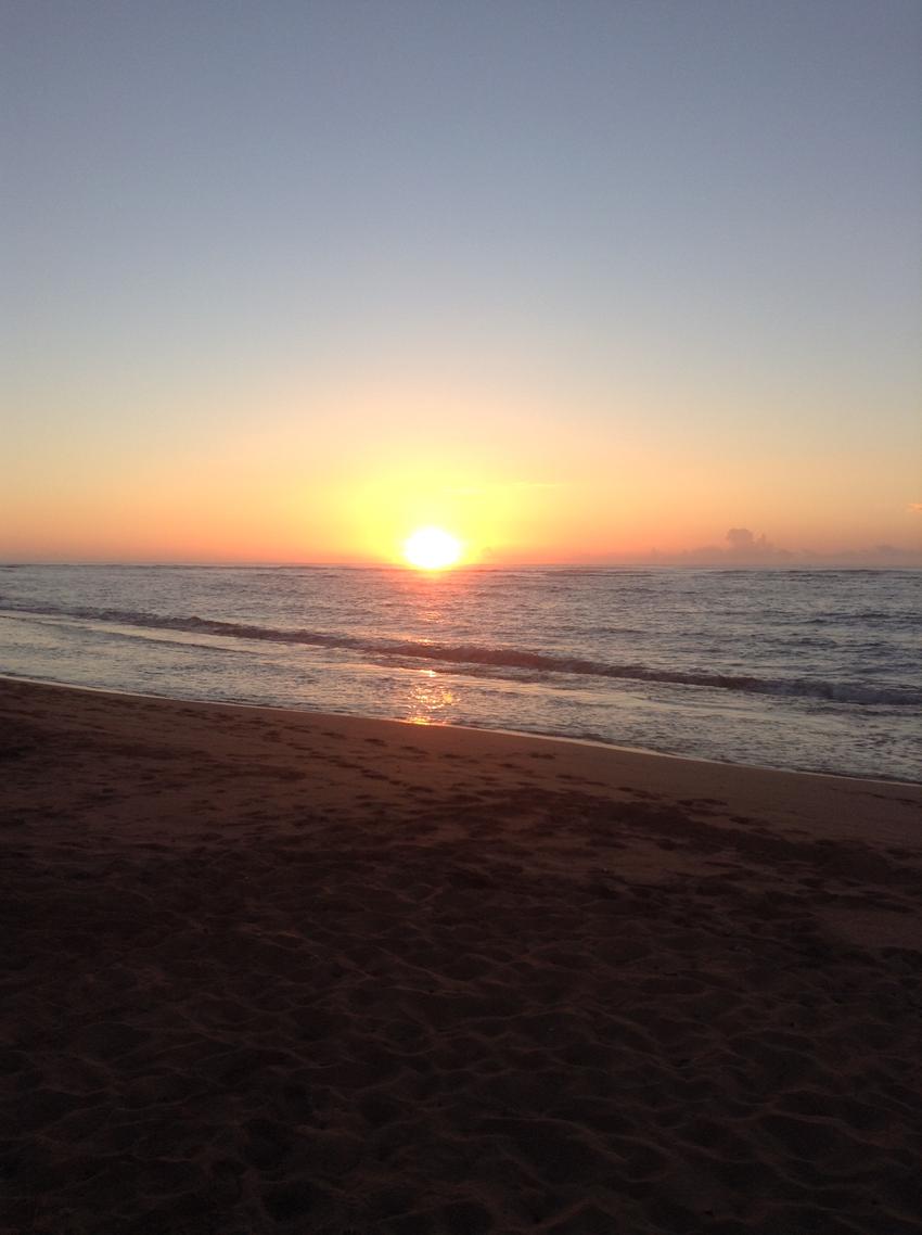 BCW: Hawaiian Sunrise
